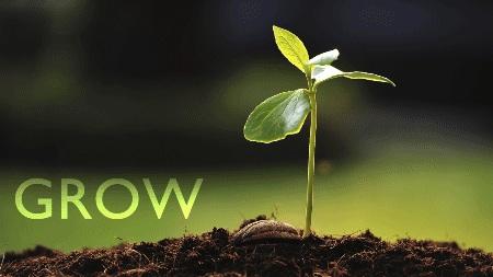 Gambar: pertumbuhan