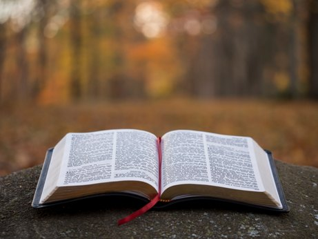 Gambar: Firman Tuhan