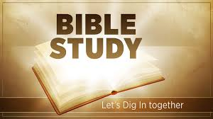 Bible Studi