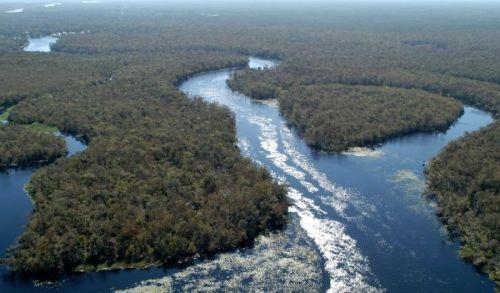 Gambar: Batang air