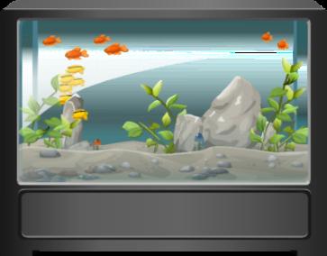 Gambar: Aquarium