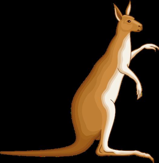 Gambar: Kanguru