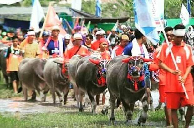 Suku Sumbawa