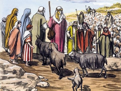 Gembala domba