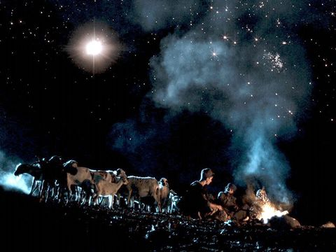 Gambar: Gembala di padang