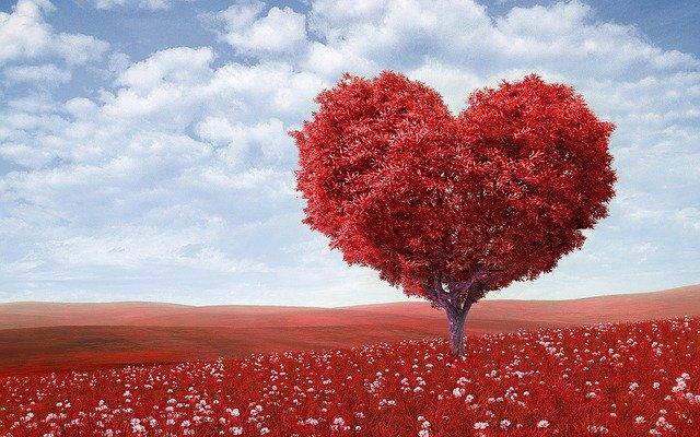 Image result for Membedakan Hati Yang Penuh Kasih