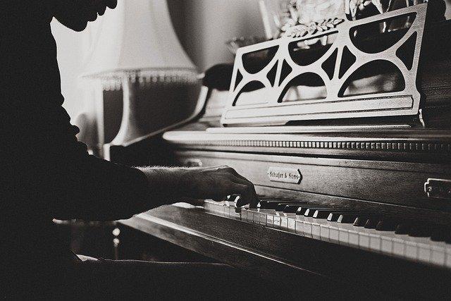 Pemain musik